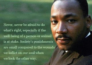Quote Of The Day Martin Luther King Again James Preller S Blog