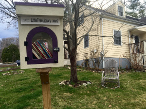 tammylittle-free-library