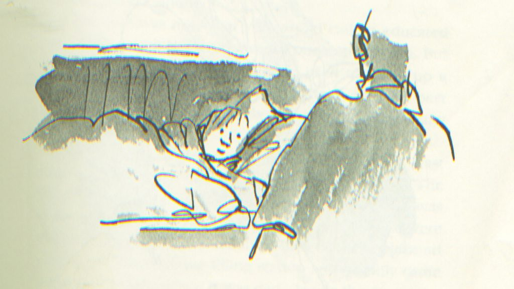 Illustration by the amazing Quentin Blake, from DANNY CHAMPION OF THE WORLD -- a book that helped inspire THE COURAGE TEST.