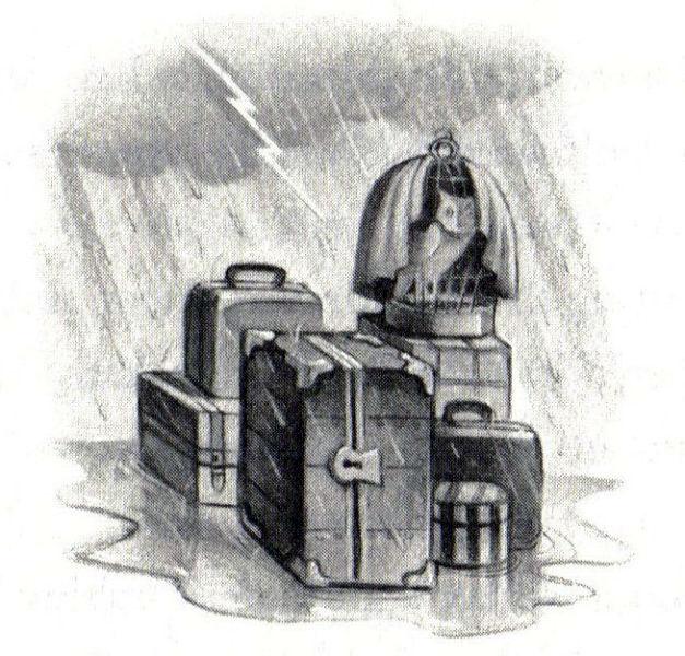 Harry Potter Illustrator
